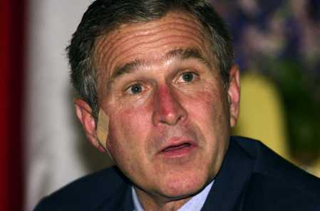 w bush essay george w bush essay